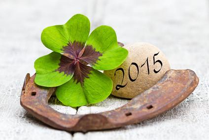 Glücksbringer und Stein auf Holz, 2015