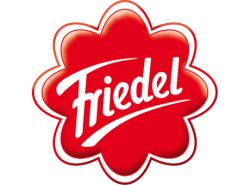 Friedel Logo - www.werbung-schenken.de